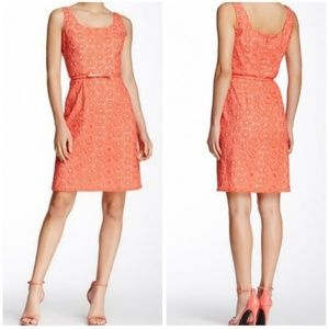 Adrianna Papell Coral Over White Eyelet Dress 4